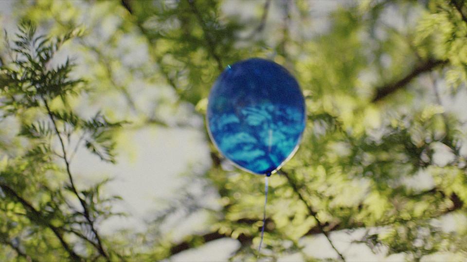 Blue Cross Blue Shield – Journey
